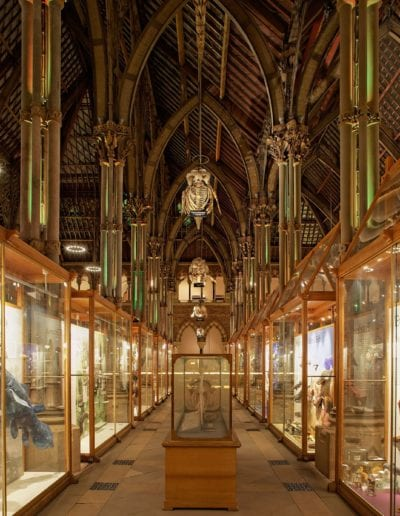 natural-history-museum-oxford-47